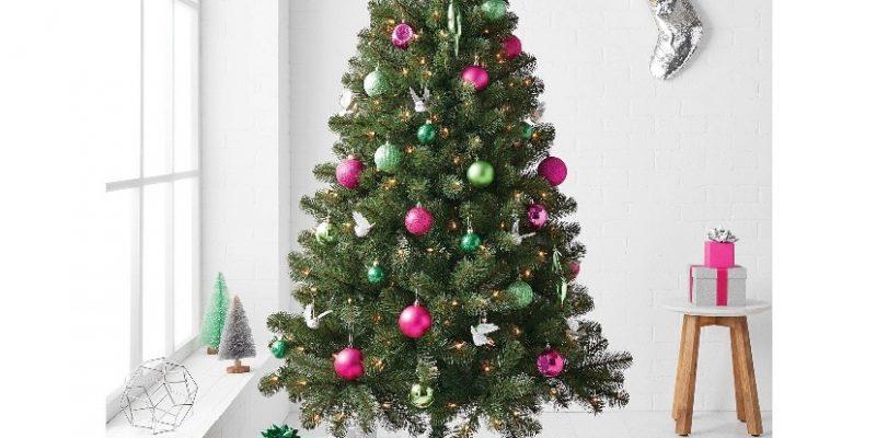 Alberta Spruce Tree