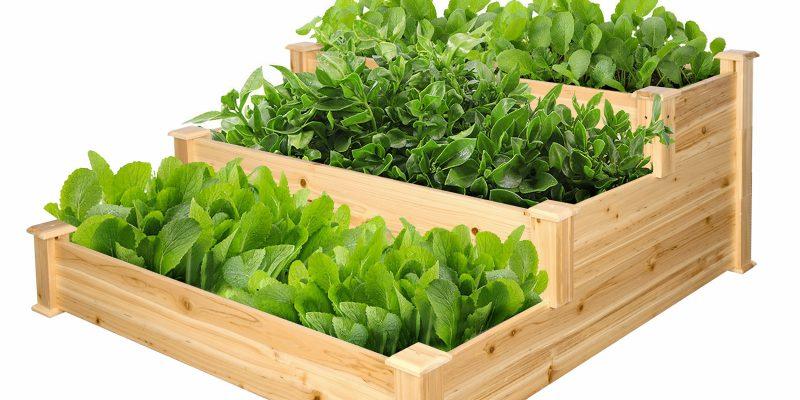 Expert Gardener 3-Tier Wood Garden Bed,